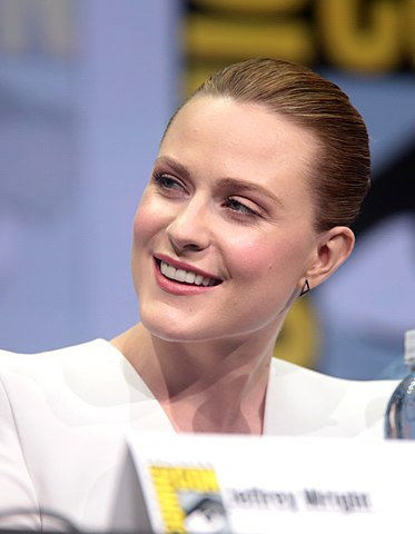 Evan Rachel Wood in 2017