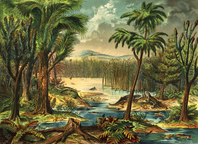 Artist's concept of Carboniferous rainforest (Image courtesy Mark Ryan. All rights reserved)