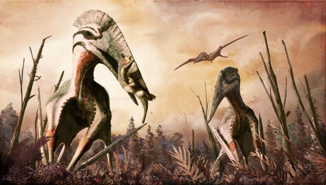 Hatzegopteryx thambema reconstruction (Image Mark Witton)