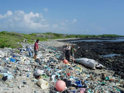 Waste reaching Kamilo Beach in the Hawaii