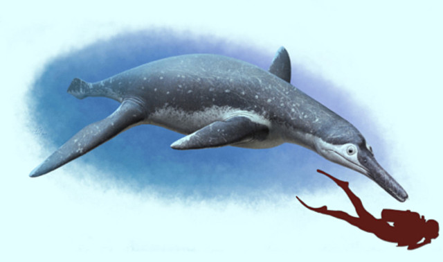 Artistic reconstruction of Luskhan itilensis (Image courtesy Andrey Atuchin)