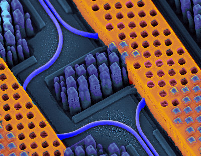 A portion of an IBM nanophotonic chip. In blue the optical waveguides transmitting high-speed optical signals and in yellow the copper wires carrying high-speed electrical signals (Image courtesy International Business Machines Corporation. All rights reserved)