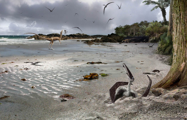 A research on pterosaur embryos indicates that they could fly from birth