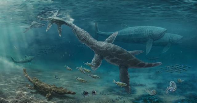 Artist's impression of Jurassic seas (Image courtesy Nikolay Zverkov. All rights reserved)