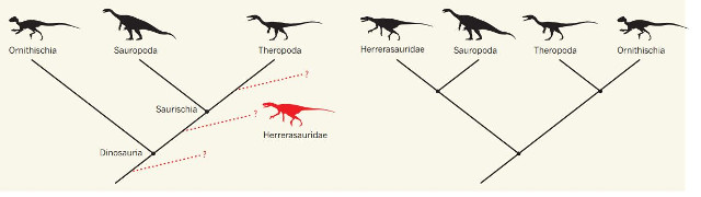 Old and new dinosaur classification (Image courtesy Nature)
