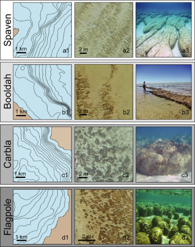 """Some """"stromatolite provinces"""": the first column shows a map of the area, the other two the stromatolites (Image E. P. Suosaari, R. P. Reid et al.)"""