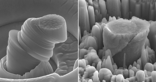 At left a deformed sample of pure metal. At right the new material made of magnesium with silicon carbide nanoparticles (Image courtesy UCLA Scifacturing Laboratory. All rights reserved)