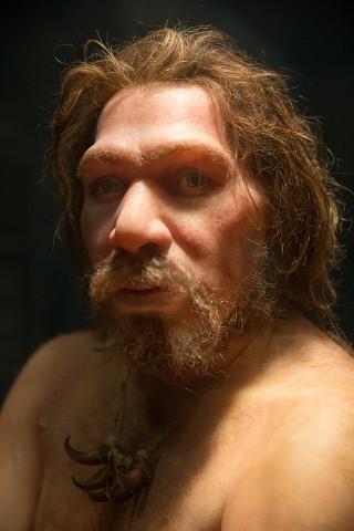 Artist's portrait of a Neanderthal (Image courtesy Petr Kratochvil (CC0))