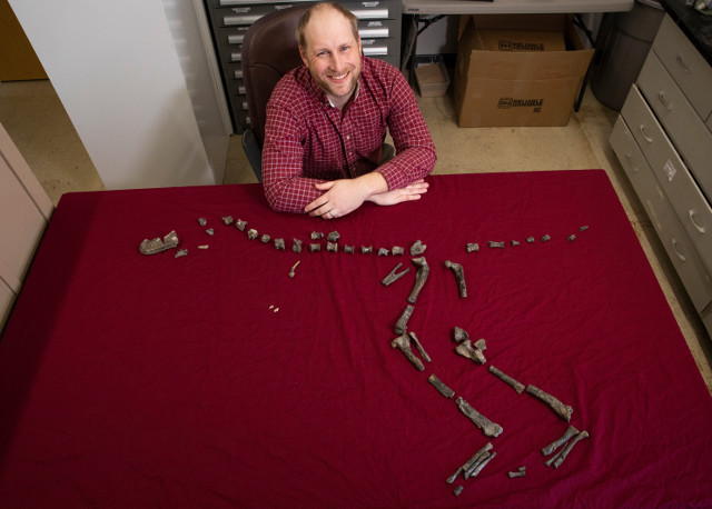 Sterling Nesbitt with the bones of Suskityrannus hazelae he discovered (Photo courtesy Virginia Tech. All rights reserved)