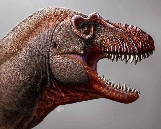 Artist's reconstruction of Thanatotheristes degrootorum's head