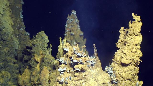 Hydrothermal vent in the Urashima site (Photo courtesy Submarine Ring of Fire 2014 - Ironman, NSF/NOAA, Jason, Copyright WHOI)