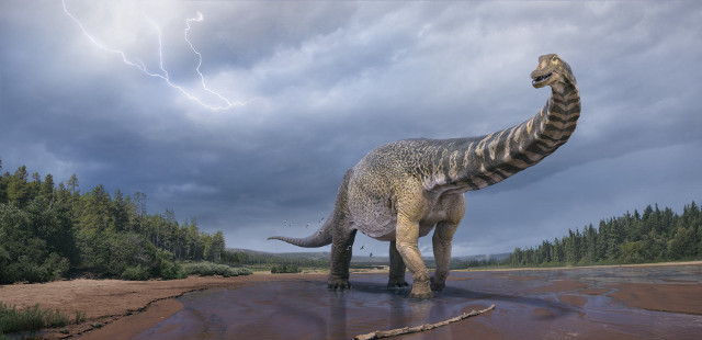 Artist's reconstruction of Australotitan cooperensis (Image courtesy Vladislav Konstantinov / Scott Hocknull)